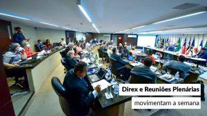 Conselheiros federais reúnem-se no plenário do CFA